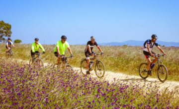 Five cyclists riding bicycles in Portugal