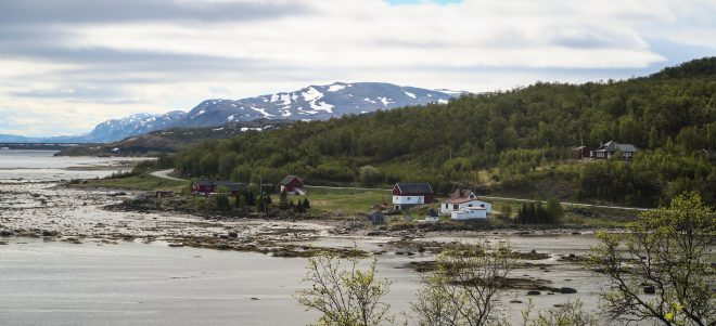 typical scene of norway coastline dotted with houses
