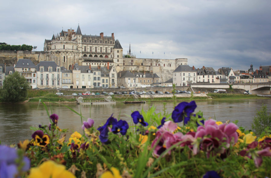 france castle and flowers